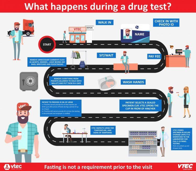 VTEC Drug Testing Services Infographic e1596192834533