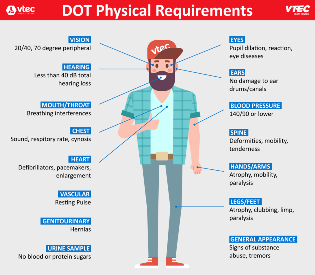dot physical exam requirements sized